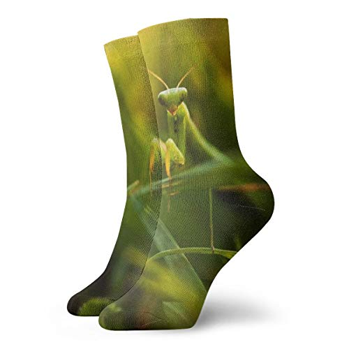 - YUANSHAN Socks Insect Praying Mantis Women & Men Socks Soccer Sock Sport Tube Stockings Length 11.8Inch