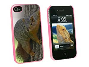 Squirrel - Snap On Hard Protective Case for Apple iPhone 4 4S - Pink by icecream design