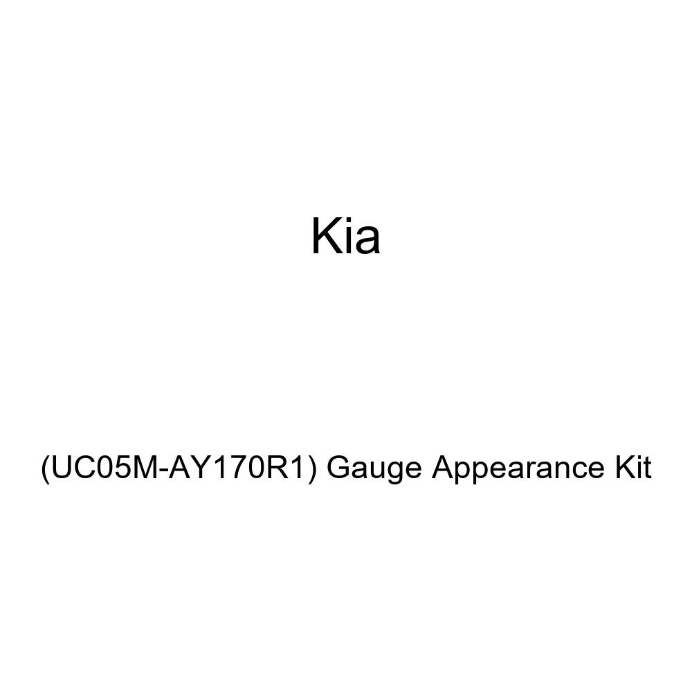 Kia Genuine UC05M-AY170R1 Gauge Appearance Kit