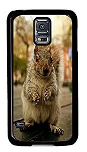 cute Samsung S5 cover Squirrel 2 Animal PC Black Custom Samsung Galaxy S5 Case Cover