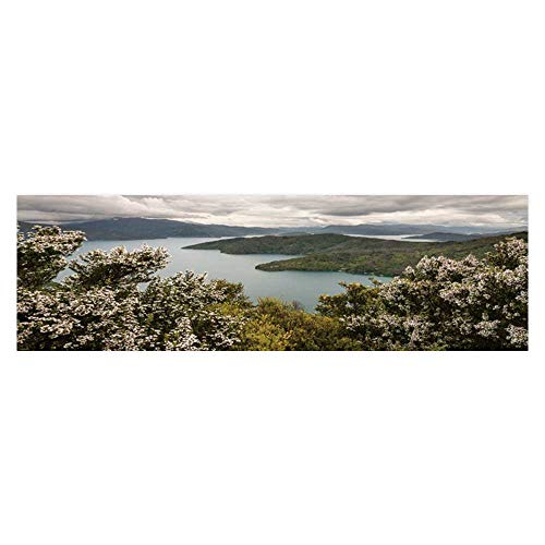 Background Manuka Trees Above Queen Charlotte Sound Wallpaper Fish Tank Backdrop Static Cling L29.5 x H11.8 ()