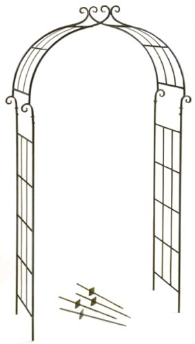 Deer Park Ironworks AR107AR201 Candy Cane Arch, Natural Patina, 84''H x 39''W x 15''D, Ground Stakes Included by Deer Park Ironworks