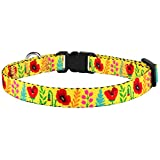 CollarDirect Cat Collar with Bell Floral Pattern