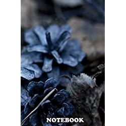 Notebook: Colored Pine Cones Two Silver , Journal for Writing, College Ruled Size 6 x 9, 110 Pages