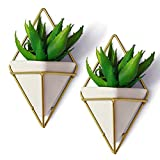 pictures of white kitchens California Home Goods Modern Hanging Planter Pots (2-Pack), Small Decorative Wall Planters for Cactus Decor & Hanging Plants, Wall Hanging Ceramic Planter with Brass Wire Frame, White Plant Decor