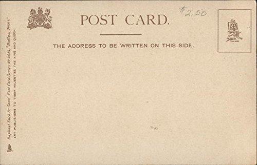Amazon.com: Birds Eye View for Oriental Hotel Dallas, Texas Original Vintage Postcard: Entertainment Collectibles