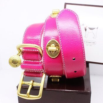 "COACH Gold Turnlock Grommets Leather Collar with Engraveable Charm 60095 Limited Edition - Gold/Pink, X-Large (22""-26"")"
