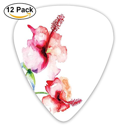 - Newfood Ss Hibiscus Flowers On Plain Background In Pastel Colors Nature Guitar Picks 12/Pack Set