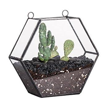 Amazon Com Ncyp 5 5 Inches Hanging Hexagon Geometric Glass
