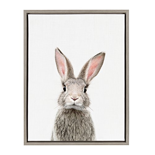 Kate and Laurel - Sylvie Female Baby Bunny Rabbit Animal Print Portrait Framed Canvas Wall Art by Amy Peterson, Gray 18 x 24