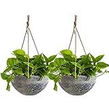 Hanging Planter Flower Plant Pots - 10 Inch Indoor