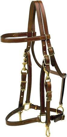 Tory Leather Halter/ Bridle Combo Trail Bridle - Havana Oversize