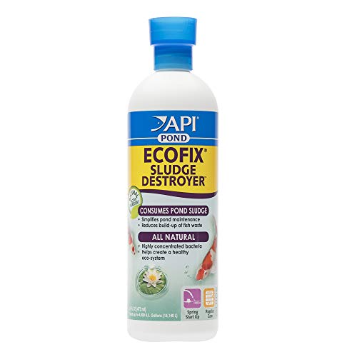 (API POND ECOFIX SLUDGE DESTROYER Pond Cleaner And Sludge Remover With Natural Bacteria 16-Ounce Bottle)