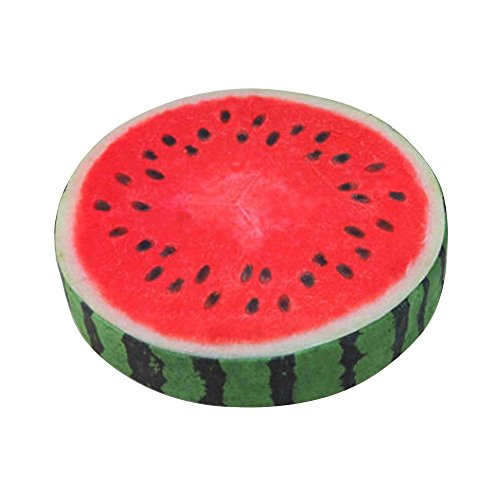 CIDEROS Multiuse 3D Fruit Slices Pattern Pet Sleeping Bed Mat Cushion for Cats and Dogs, Office Chair Back Cushion Sofa Throw Pillow for Man, Medium Size, Watermelon