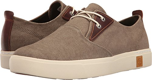 Amherst Shoe (Timberland Men's Amherst Plain Toe Oxford, Canteen Cotton Canvas, 10 M US)