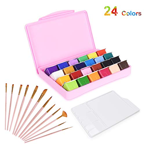 HIMI Gouache Paint Set, 24 Colors x 30ml Unique Jelly Cup Design, Portable Case with Palette, Non Toxic Paints for Artist, Hobby Painters & Kids, Ideal for Canvas Painting for Novelty Gift
