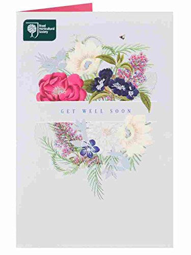 Get Well Soon Royal Horticultural Society Floral Bouquet Card New