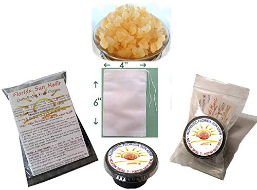 1/4 Cup Live Organic Water Kefir Grains (Tibicos) Natural Probiotics by Florida Sun Kefir