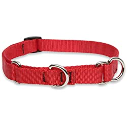"LupinePet Basics 3/4"" Red 14-20"" Martingale Collar for Medium and Larger Dogs"