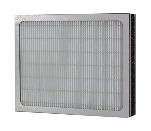 Hamilton Beach 04993 True-Air Tower Replacement (Hamilton Beach Hepa Filter)