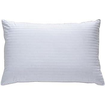 Amazon Com Classic Brands Plush Down Pillow Best Pillow