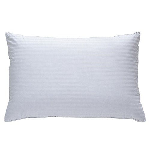 Classic Brands Plush Down Pillow | Best Pillow for Back, Side, and Stomach Sleepers, Queen, White