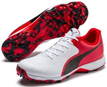 PUMA 19 FH Rubber Men's Cricket Shoes (Worl Cup Edition) (UK