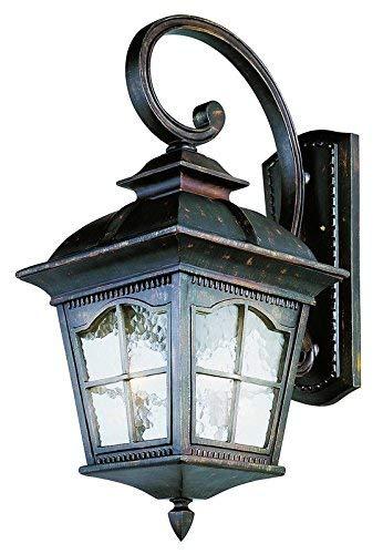 Trans Globe Lighting 5424 AR Outdoor Briarwood 30