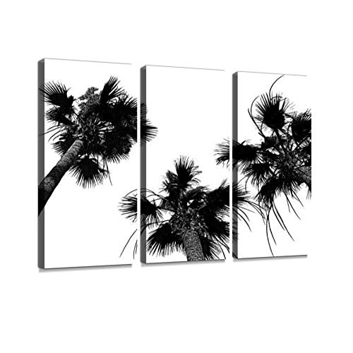 Three coco palm trees. Exotic island black and white background. Summer tropical concept Canvas Wall Artwork Poster Modern Home Wall Unique Pattern Wall Decoration Stretched and Framed - 3 piece