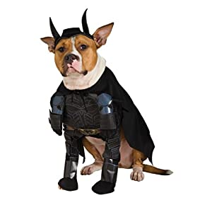 Batman The Dark Knight Rises Pet Costume, Medium