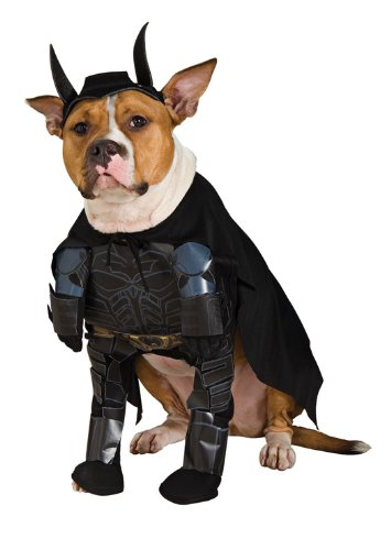 Batman The Dark Knight Rises Pet Costume, Medium -