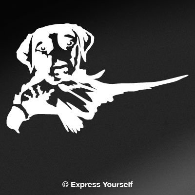 Hunting Dog Decal (Express Yourself Products Lab Retreiving Pheasant (White - Image Facing as Shown - Medium) Decal Sticker - Hunting Dog Collection - Labrador Retriever)