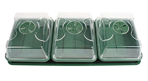 EarlyGrow 70782 Propagator With Tray And Mat, 9'' x 21'' x 6'', Black/Green by EarlyGrow