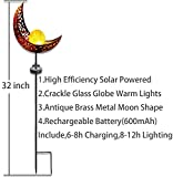 Solar Garden Stake Lights,2 Pack Crackle Glass
