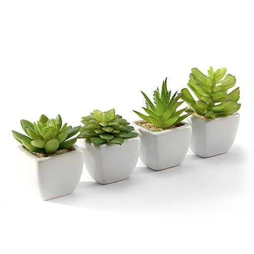 - Nattol Modern Mini Artificial Succulent Plants Potted in Cube-Shape Whtie Ceramic Pots for Home Decor,Set of 4(White)