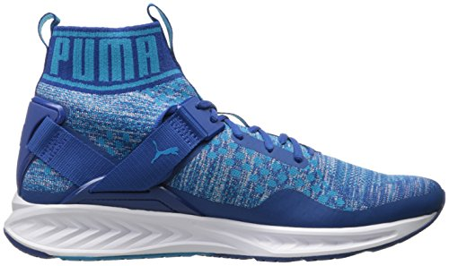 PUMA Mens Ignite Evoknit Cross-Trainer Shoe, True Blue/Blue Danube/Puma White, 8 M US