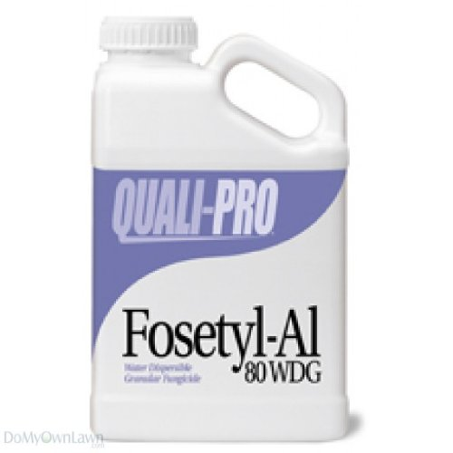Fosetyl-Al 80 WDG Turf and Ornamental Fungicide 5.5 lbs compare to Aliette by ITS Supply