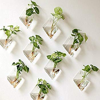 kingbuy 4 Pack Wall Plant Terrariums Glass Hanging Planter Diamond Air Plants Holder Indoor Home Office Living Room Decor vase Succulent Container [並行輸入品] B07QXF63DD