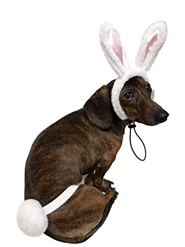 Dog Easter Costume - Midlee White Bunny Ears for Dogs with Tail (Small)