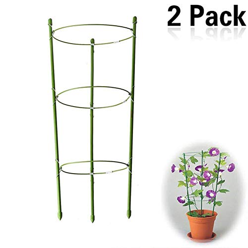 Yojoloin 2 Pack Garden Plant Support Ring Garden Trellis Flower stainless Steel Support Climbing Vegtables&Flowers&Fruit Grow Cage with 3 Adjustable Rings 17.8(2PCS)