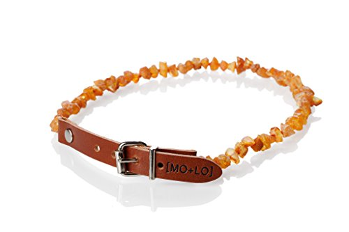 Mo + Lo Naturals Raw Baltic Amber Collar - for Dogs and Cats - Chemical-Free, 100% Authentic, (10