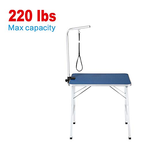 ITORI 32″ Professional Grooming Table for Dogs and Pets which is Foldable and Durable with Adjustable Arm, Stainless Leg Frame and Extra Hauch Holders