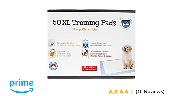 BarkBox Bulk Ultra-Absorbent Pet and Puppy Training Pee Pads; 3 Sizes; Activated Carbon Charcoal Pheromone Attractant Quick Dry Odor-Neutralizing