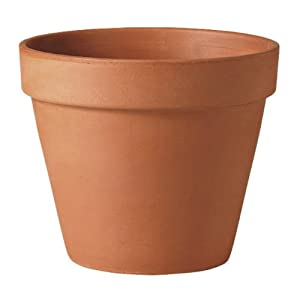 Small Mini Terracotta Plant Pots Pack of 15 Size 6 cm x 68 cm