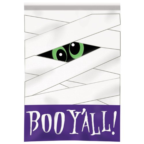 Large Size Applique Flag, Boo Y'all, 29 X 42 Inches Review