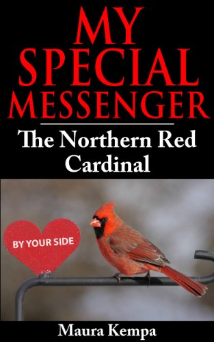 My Special Messenger: The Northern Red Cardinal