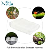 """PHI VILLA Plant Bag Netting - Insect/Bird Netting - Plant Cover with Zipper Closure 47"""" W x 40"""" H - 36"""" Dia in Use"""