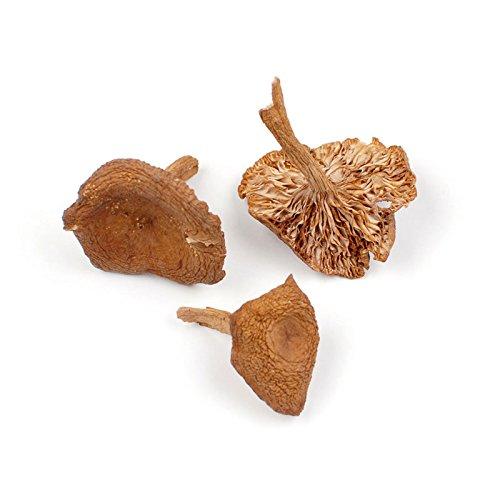 Candy Cap Mushrooms, 1 LB Bag (Candy Mushroom Cap)
