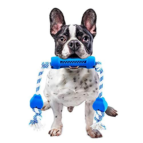 Think Now Store – Dog Toys Dog Toy Aggressive Chewer Interactive Dog Toy Rubber Long Rope Dog Toy Chewer Indestructible Teeth cleaning Dog Toys, Small Medium Dogs, Improves Oral Health Chew Toy (Blue)