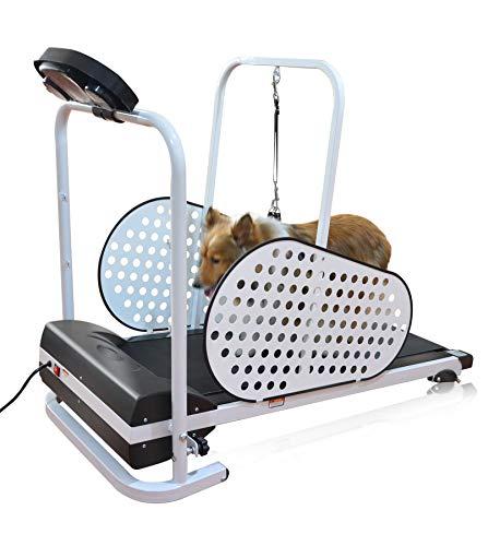 SHELANDY Pet Treadmill | Smart and Motorized Treadmill for Small & Medium Dogs